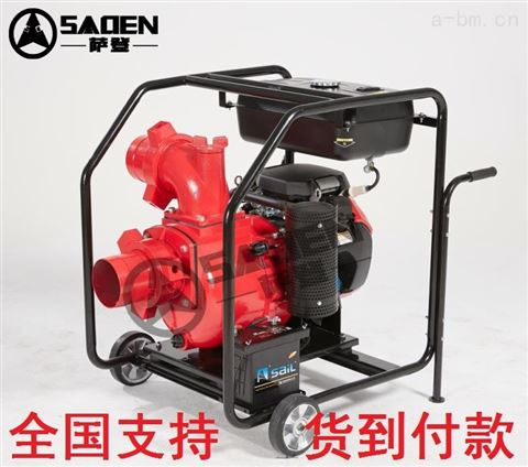 SADEN薩登DS150WPE排污泵小型應急型號